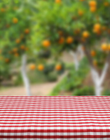 orange grove: Product photo template red table cloth orange grove background