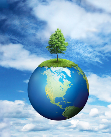 global environment: Lone tree growing on planet Earth, environmental concept