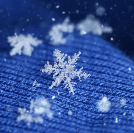 Newly fallen snow flake crystal on blue knitten wool winter feeling