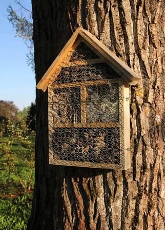 Insect hotel attached on a thick tree trunk