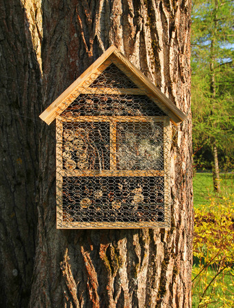 Insect hotel on tree trunk front view 版權商用圖片