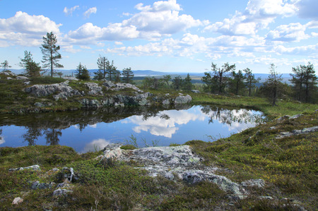 Small pond on Sarkitunturi fell top reflects the blue sky and white clouds 版權商用圖片