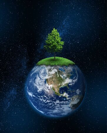Lone tree growing on planet Earth, global warming climate change concept
