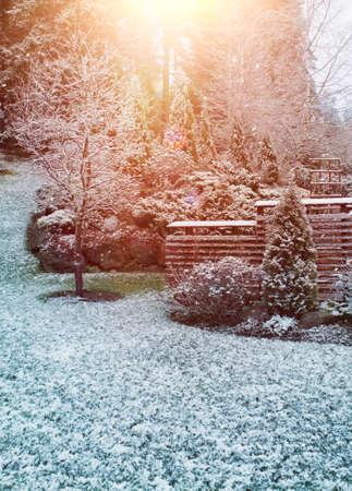 First winter snowfall in autumnal garden morning sunlight