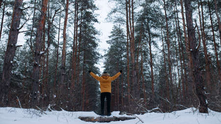 winter wood: Man alone in forest. Cold snowy winter.