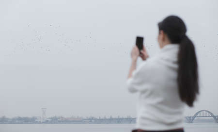 overcast: Woman photographing birds in overcast sky Stock Photo