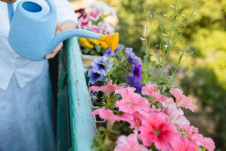 Water gevende bloemen op het balkon - bebouwd schot