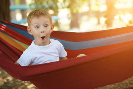 Cheerful little boy in hammock amazedly looking in a pine forest, delight emotion