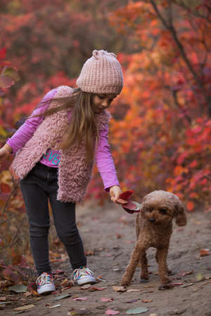 Little girl playing with dog together on nature at the autumn day, art portrait