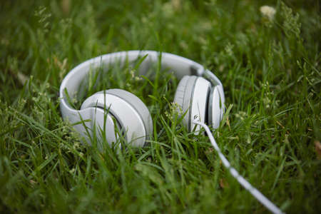 White headphone in the grass, sound concept