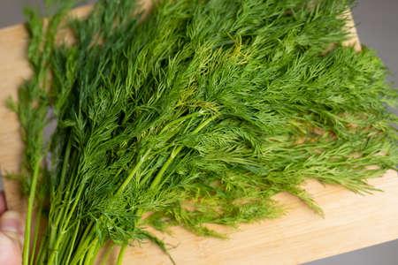 Dill on a cutting board, green food Stok Fotoğraf