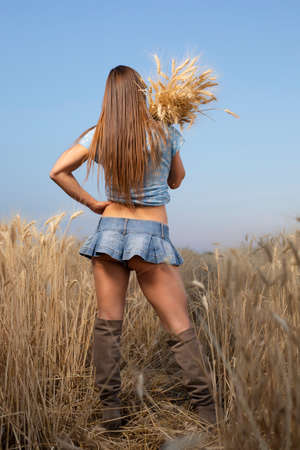 Contadina sexy in minigonna che tiene spighette di grano su un campo