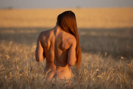 Back side of naked body woman on a field, nudes at nature 写真素材