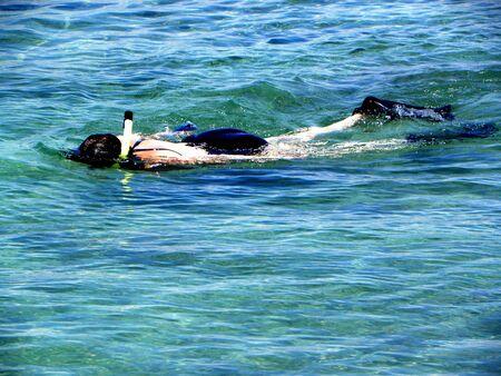 Snorkeling                       Reklamní fotografie
