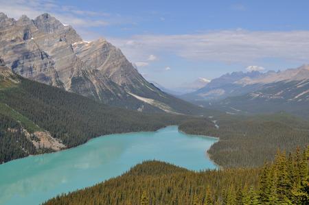 banff: Peyto Lake Banff, Canada