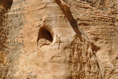 petra  jordan: Little Petra, Jordan Stock Photo