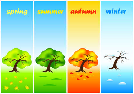 Collection of trees Stock Vector - 11025477