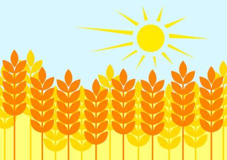 Campo de ma�z de verano Vectores