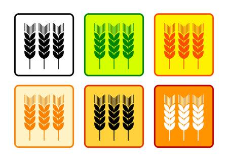 Collection of cereals Vector