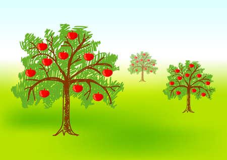 appletree: Three apple-trees