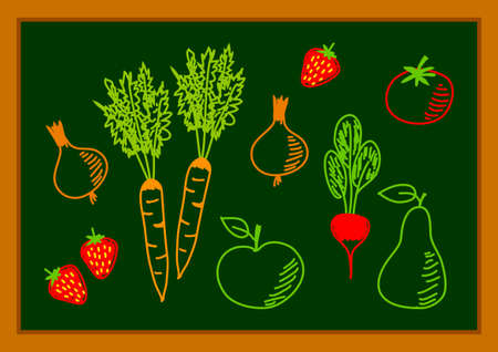 Drawing of healthy food      Vector