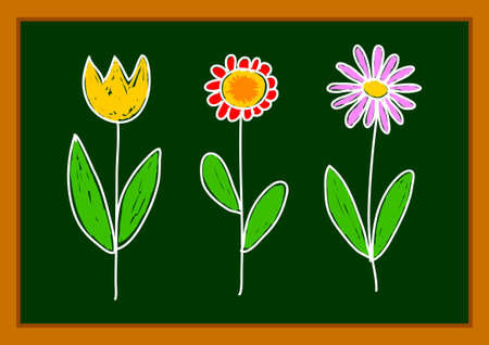 Drawing of flowers      Vector