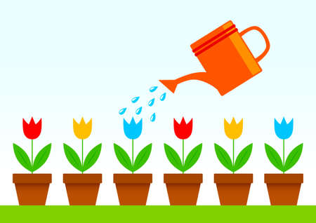 flowerpots: Colorful tulips