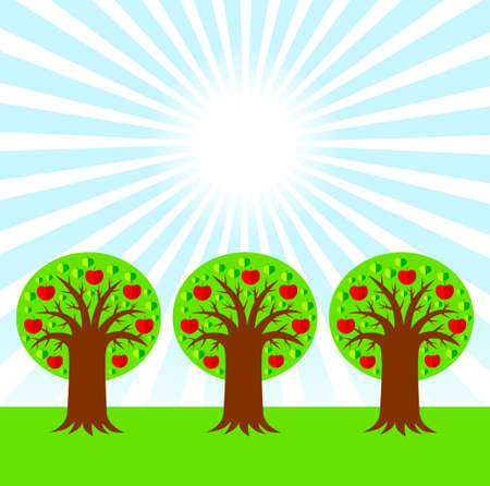 Apple orchard  Stock Vector - 12220297