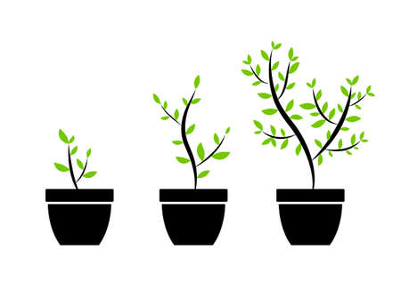 grows: Plant icons