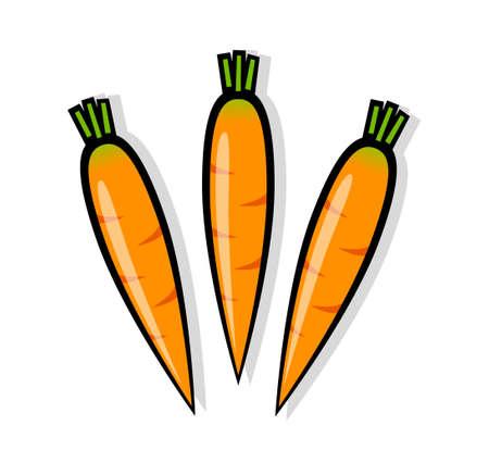 Orange carrots Stock Vector - 13108258
