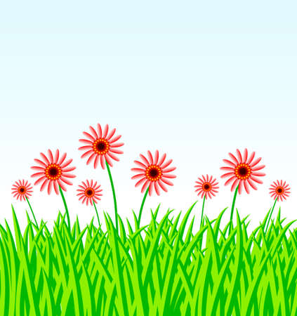 Summer meadow with red flowers Stock Vector - 13429709