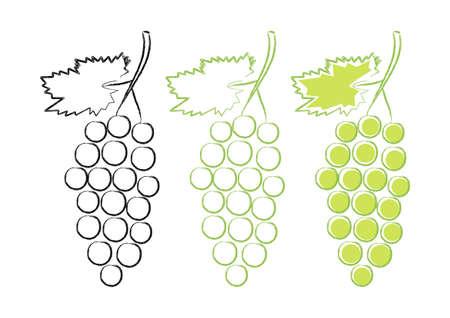 vine leaf: Grape icons on white background Illustration