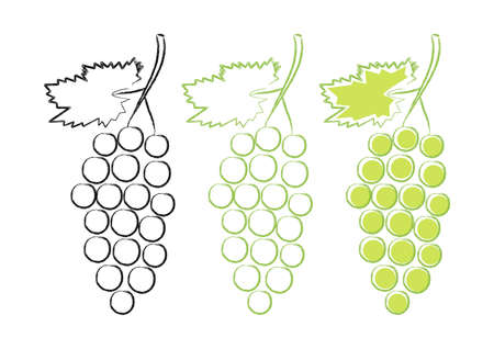 grape crop: Iconos de la uva en el fondo blanco