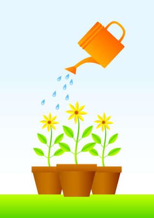 붓는 것: 갈색 냄비에 식물