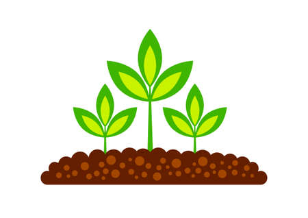Plant icon on white background Stock Vector - 16246453