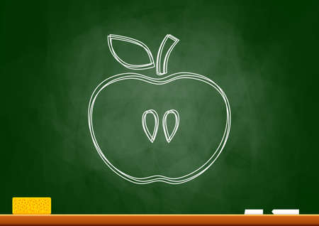 Drawing of apple on blackboard Stock Vector - 18596715