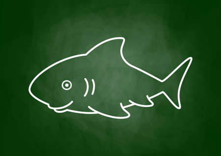 Shark drawing on blackboard Vector
