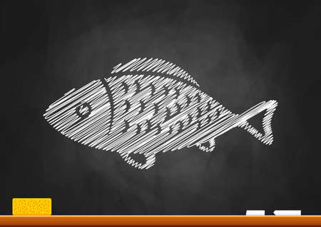 Fish drawing on blackboard Stock Vector - 21434104
