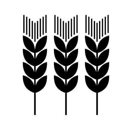 corn stalk:   Agricultural icon   Illustration