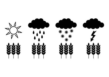 ear drop: Weather icons Illustration