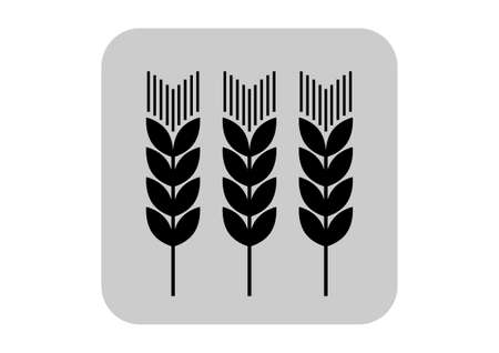 corn stalk: Cereal vector icon