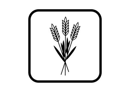 Grain vector icon on white background Vector