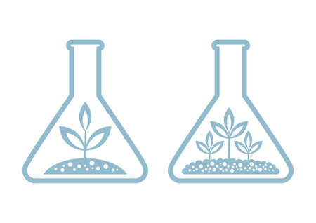 laboratory glass: Plant in laboratory glass