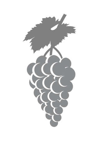 wine and grapes: Grey grape icon on white background Illustration