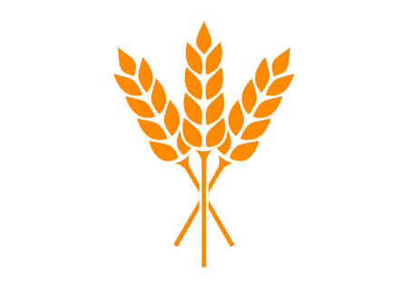 cereal: Orange cereal icon on white background