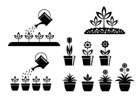 tulips isolated on white background: Garden icons on white background Illustration