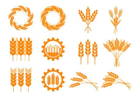 cebada: Iconos cereales anaranjadas en el fondo blanco