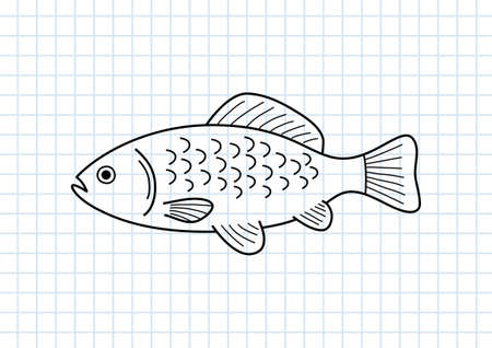 squared paper: Fish drawing on squared paper