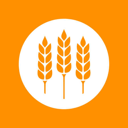 crop circles: Orange cereal vector icon, healthy food