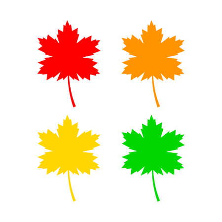 Maple leaf vector icon on white background